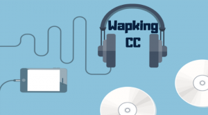 Wapking: Get hands on the Latest Mp3 tracks Online for FREE!!!